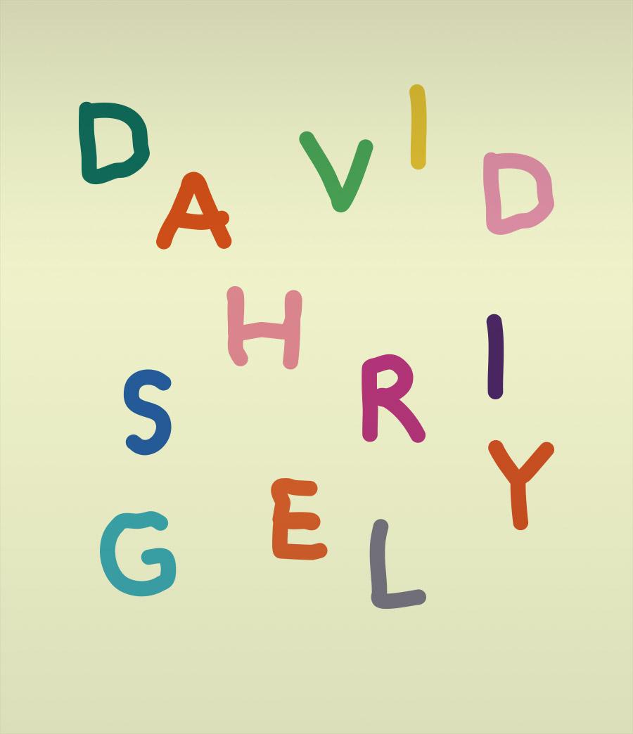 DAVID SHRIGELY 데이비드 슈리글리전