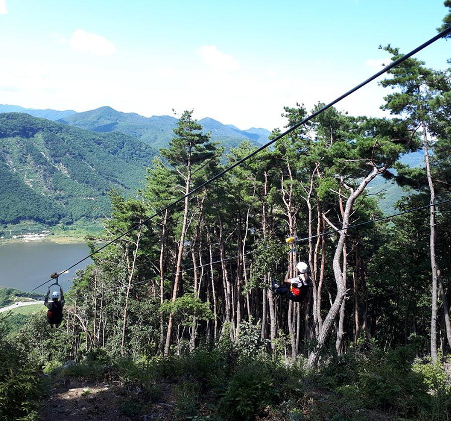 영천시 보현산댐 짚와이어