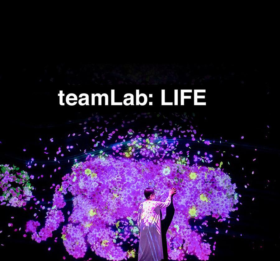 팀랩: 라이프(teamLab: LIFE)