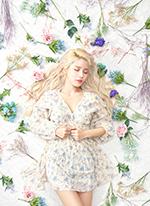 솔라감성 콘서트 'Blossom' 티켓오픈 안내