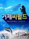 [경남]거제 씨월드 1인 입장권 (~3/31)