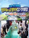 [전남] 곡성키즈글램핑 빙어/금붕어 잡기체험장 이용권