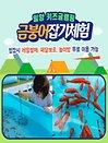 [경상] 밀양 금붕어잡기 체험권