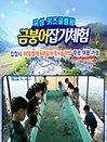 [전남]곡성키즈글램핑 금붕어잡기 체험권