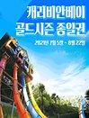 [용인]캐리비안베이 골드 종일이용권 (~8/22)