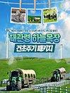 강원 평창 대관령 하늘목장 입장권+양떼건초주기체험