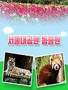 [과천]서울대공원 동물원 입장권